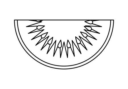 fresh slice kiwi fruit healthy vector illustration design