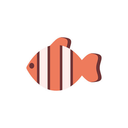 clownfish animal design Sea life ecosystem fauna ocean underwater water nature marine tropical theme Vector illustration