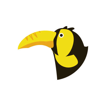 Toucan bird design, Animal feather predator wildlife fight beak natural and latin america theme Vector illustration