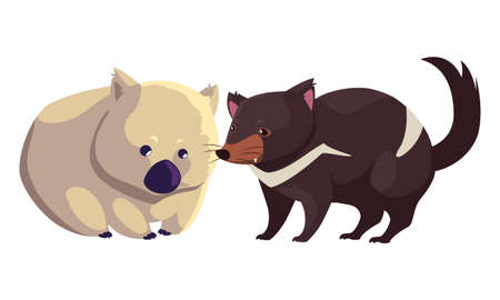 wombat and tasmanian devil on white background vector illustration design