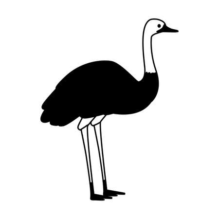 cute emu on white background vector illustration design