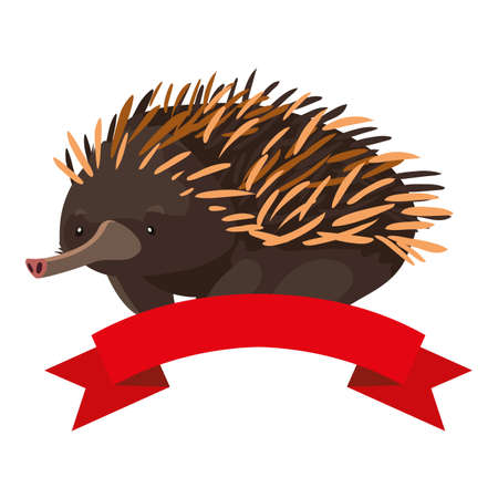 cute echidna with ribbon on white background vector illustration design