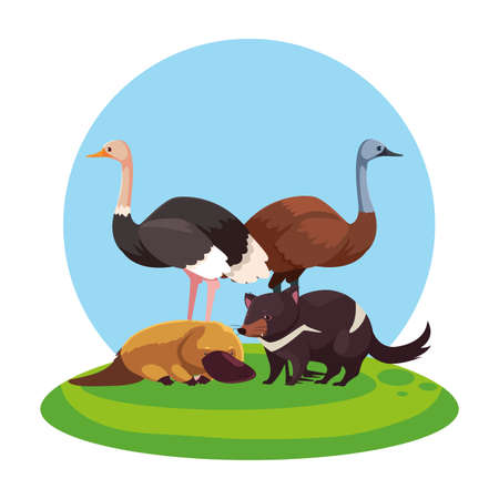 animals of australia over landscape vector illustration design 일러스트