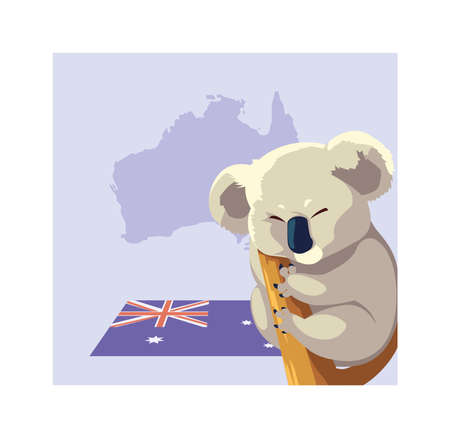 greeting card with australian Koala on a tree vector illustration design