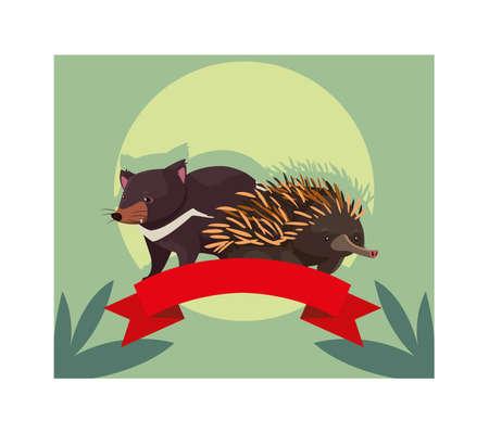 card with tasmanian devil and echidna vector illustration design