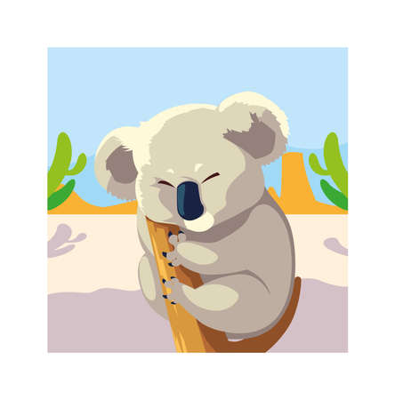 card with koala in australian landscape vector illustration design