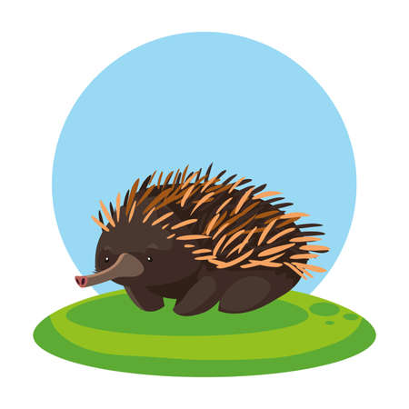 cute echidna with background landscape vector illustration design