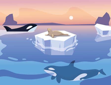 killer whale whit iceberg floating in in the sea vector illustration design