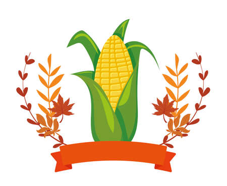 Corn and autumn leaves design, Food vegetable agriculture green plant maize cob and organic theme Vector illustration Иллюстрация