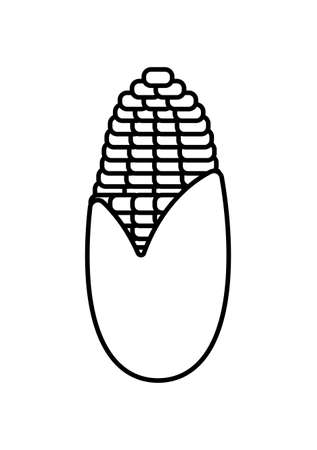sweet corn in white background vector illustration design