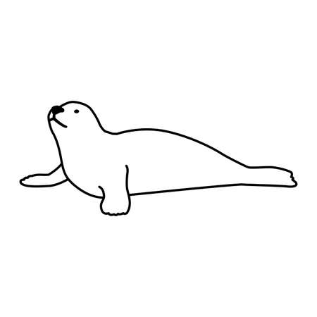 a seal fish on a white background vector illustration design