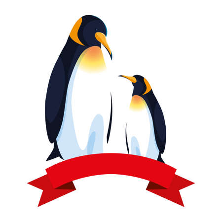 emperor penguins couple on white background vector illustration design
