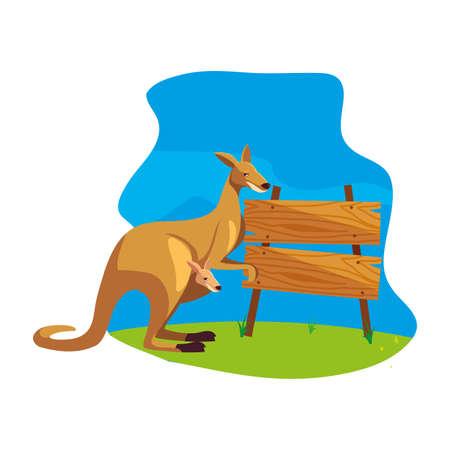 cute australian kangaroo with background landscape vector illustration design