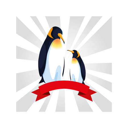 penguins greeting card with ribbon vector illustration design