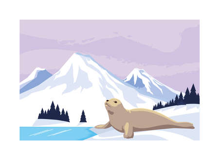 seal at the north pole, arctic landscape vector illustration design