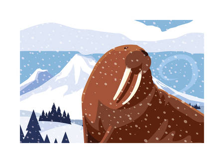 walrus at the north pole, arctic landscape vector illustration design 向量圖像