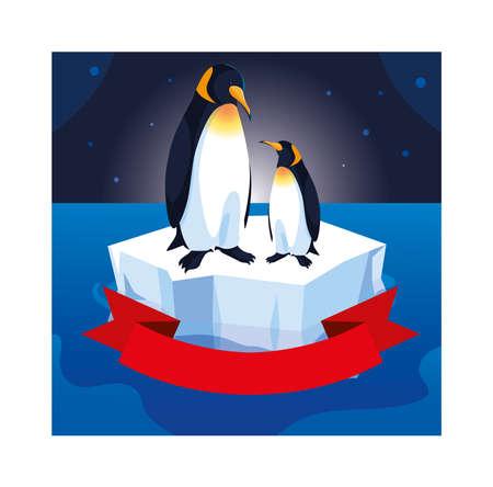 penguin couple on an ice floe drifting vector illustration design