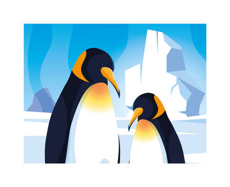 penguins at the north pole, arctic landscape vector illustration design