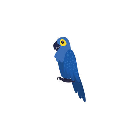 blue parrot macaw bird on white background vector illustration design