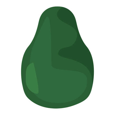 avocado nutrition fresh fruit vector illustration design