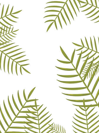 summer time holiday frame border tropical leaves vector illustration