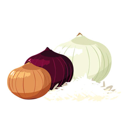 onions design, Vegetable organic food healthy fresh natural and market theme Vector illustration 向量圖像