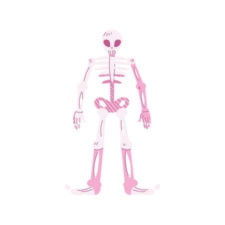 human skeleton, body part on white background vector illustration design Standard-Bild - 141565344