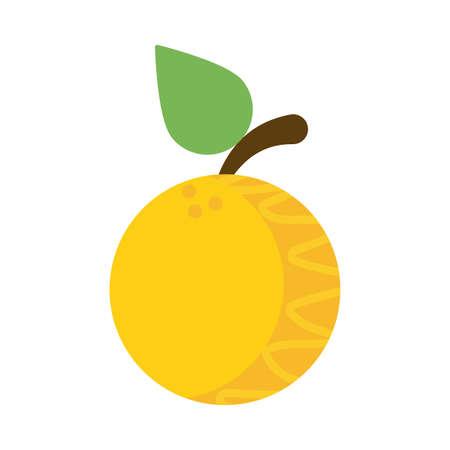 fresh and delicious orange on white background vector illustration design