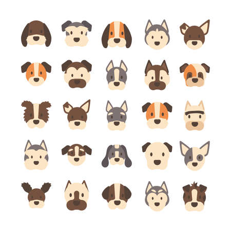set of icons of faces different breeds of dogs vector illustration design