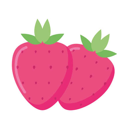 strawberries fruits design, Healthy organic food fresh sweet nature juicy and natural theme Vector illustration
