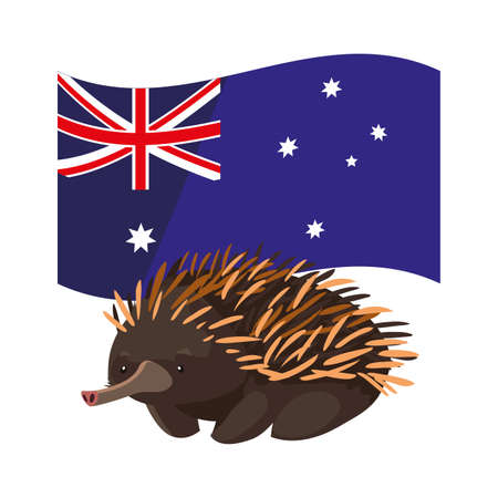 echidna with australian flag in the background vector illustration design