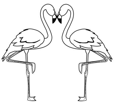 exotic flemish couple birds with heads up vector illustration design