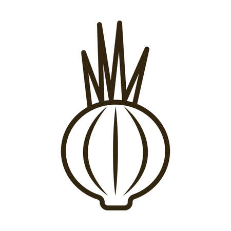 onion on white background, line style icon vector illustration design