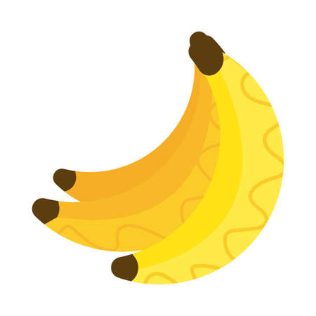 fresh and delicious banana on white background vector illustration design 일러스트