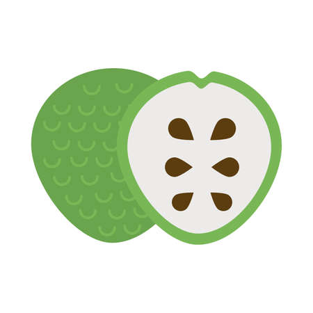 fresh and delicious soursop on white background vector illustration design