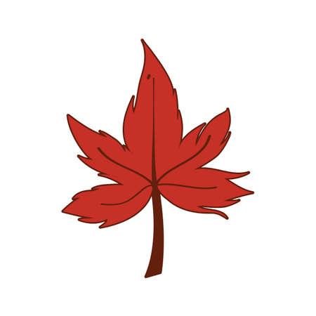 Autumn maple leaf design, season nature ornament garden decoration and botany theme Vector illustration