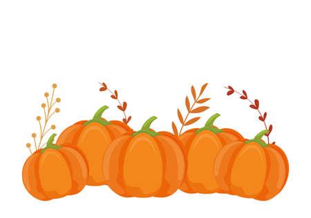 Autumn pumpkins and leaves design, season nature ornament garden decoration and botany theme Vector illustration