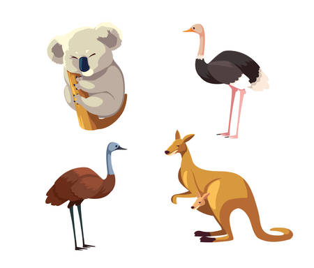 set of wild animals of australia on white background vector illustration design 일러스트