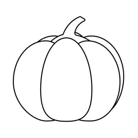 Pumpkin design, Fruit healthy organic food sweet and nature theme Vector illustration
