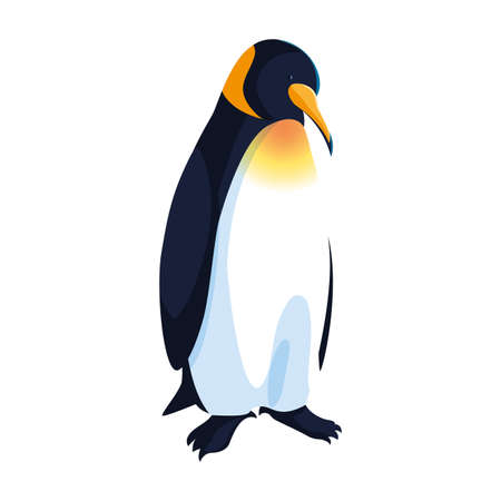 emperor penguin on white background vector illustration design Illustration