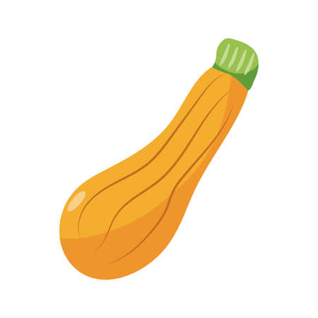 courgette icon over white background, flat detail style, vector illustration