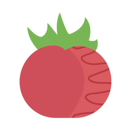 fresh and healthy vegetable, tomato on white background vector illustration design