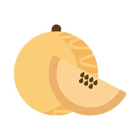 fresh and delicious cantaloupe on white background vector illustration design Ilustração