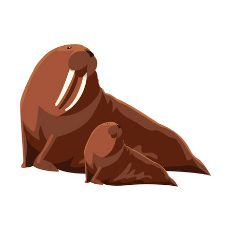 walrus with cub on a white background vector illustration design Ilustração