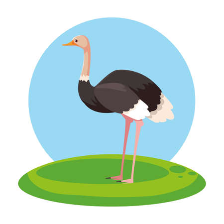 cute ostrich with background landscape vector illustration design