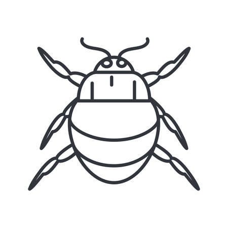 chafer insect icon over white background, line detail style, vector illustration  イラスト・ベクター素材