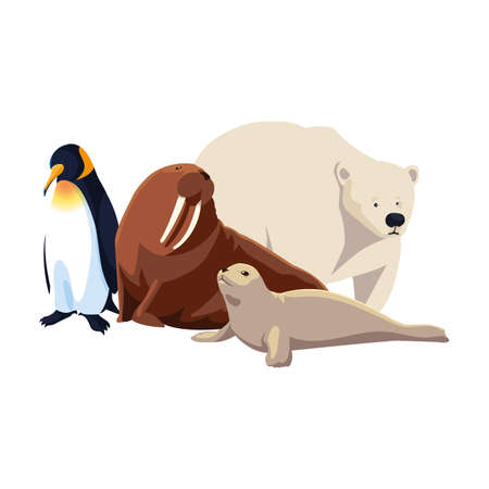 arctic animals in a white background vector illustration design