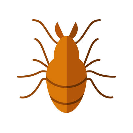 chafer insect icon over white background, flat style, vector illustration