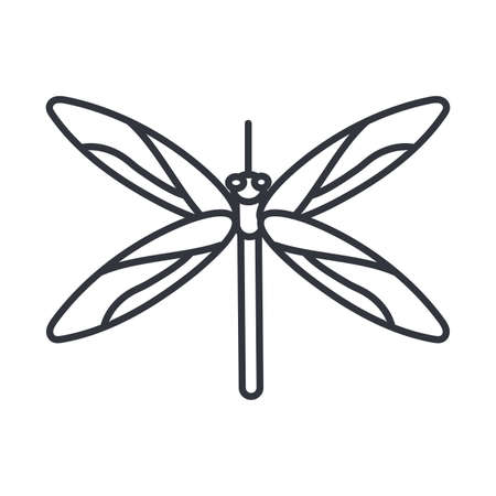 dragonfly insect icon over white background, line detail style, vector illustration  イラスト・ベクター素材