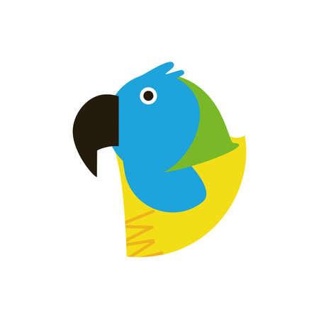Macaw bird design, Animal feather predator wildlife fight beak natural and latin america theme Vector illustration